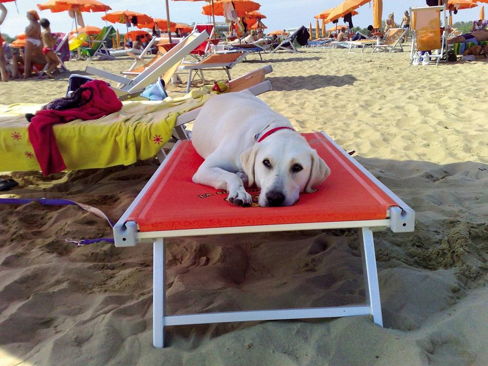 Vacanze per famiglie a Bibione
