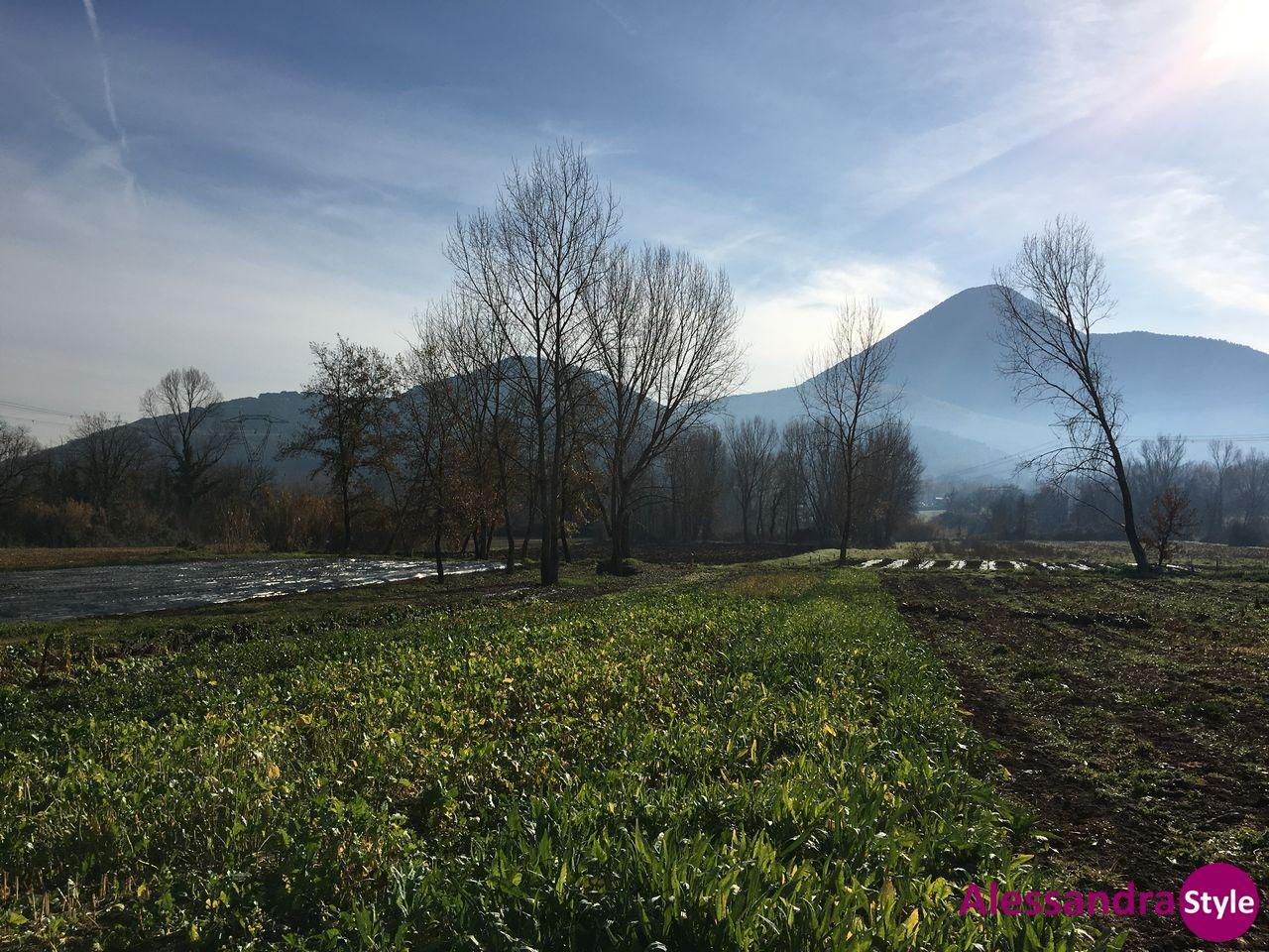 Tenuta Agri-Spa Esdra, coccole, natura e buon cibo