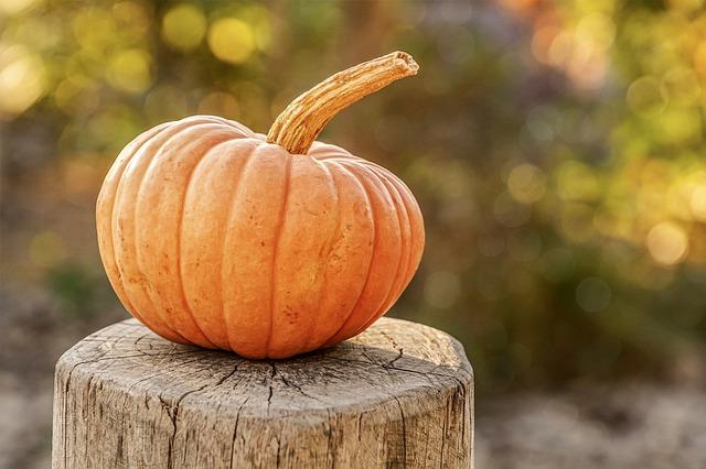 cosa fare in autunno