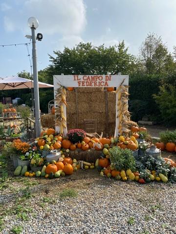 Il Campo di Federica, il campo di zucche Pumpkin Patch vicino a Milano